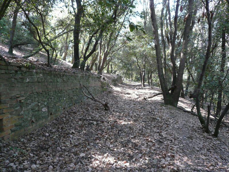 muros2-800x6001